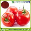 nuevos productos calientes 2015 para la mejor calidad de pasta de tomate en polvo