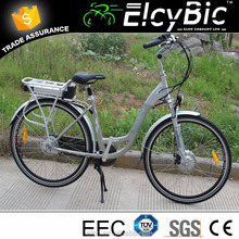 2 wheels powered unicycle electric motorcycle with fixed gear(E-TDF039A )