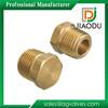 Popular Top Sell Brass Plug Insert