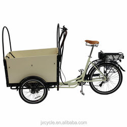 Europe Hot sale motorized cargo tricycle