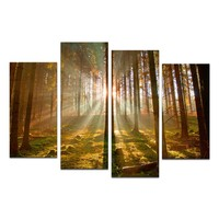 Large size 4 panels Framed Group Canvas Wall Art