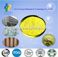 China manufacturer supply natural herbs medicine quercetin powder,quercetin,quercetin dihydrate