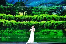 Stage Advertising Led Display p10 advertising display witt ce/rohs/ fcc/iso Traffic 3D Led Display