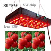 Greenhouse Garden Growing led grow light 5w chip veg & flower switchable CIDLY 400W grow led lights