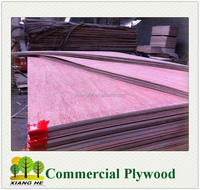 8MM UTY Grade Plywood to Thailand/Bintangor Faced Plywood