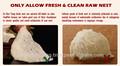 Nido de pájaro naturales a partir de material con tónico para la belleza, juvenil y anti- aging_anti- oxidant_beauty productos