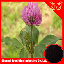 high quality and low price red clover extraction/p.e.