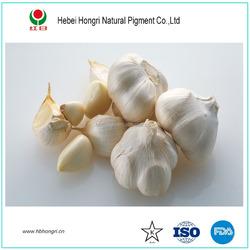 2015 high quality dehydrated garlic granules