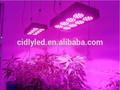 300w luzes led crescer, led cresce a luz de espectro completo, tropical frutas todos os levou cresce a luz com alta qualidade