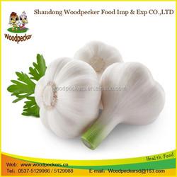2015 high quality jinxiang manufacture fresh pure white garlic