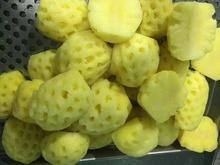 Wholesale Pineapple Fruit