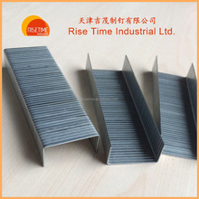 35 Carton Staples Galvanized Manufacturer