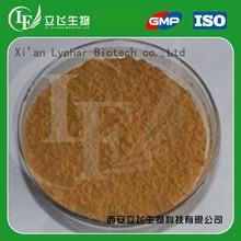 Lyphar Provide Top Quality Echinacea Purpurea Extract