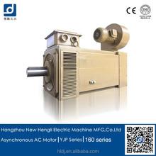 China market of electronic ac motor electric vehicle