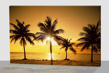 picture framed The seaside tropical palm trees luminous canvas painting