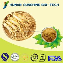 Hot product sex medicine panax ginseng P.E. powder 10% total ginseng saponins