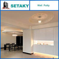 wall putty (skim coat)- for concrete use --SETAKY - XINDADI GROUP Chinese Manufacturer