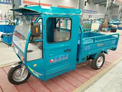 China cheap gasoline/petrol cargo tricycle with 2.0x1.2m box