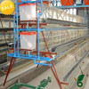 poultry use use plastic poultry transport chicken layer cage for sale