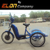 Three wheel electric tricycle with 1 pedal assistant system (E-TDR07)