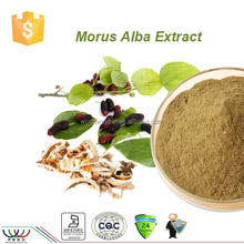 Natural mulberry extract powder 10% polysaccharides,FDA HACCP 5% DNJ Mulberry Leaf Extract,factory supply Mulberry Leaf Extract