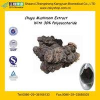 GMP Manufacturer supply Top Sale Natural Chaga P.E with Polysaccharides