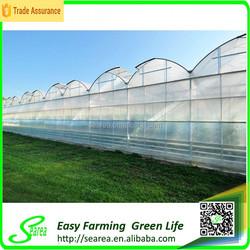 Steel skeleton frame greenhouse for sale on rodent roof