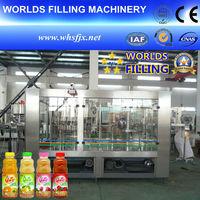 RCGF24-24-8 Automatic PET Bottle Juice Hot Filler