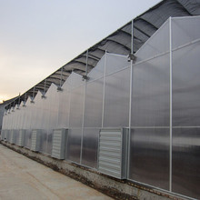 High Quality 10-year Warranty ISO Certification 100%Bayer Marolon fiberglass greenhouse with UV Protection