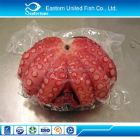 IQF frozen octopus seafood fish high quality whole frozen octopus