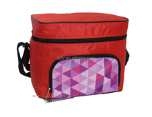 new product fashion cooler bag can beer lunch cooler bag
