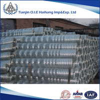 China top ten selling products 1/2 inch square hole welded wire mesh