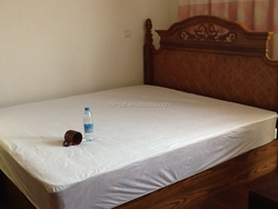 Family Use Mattress Protector