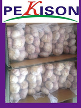 Chinese Natural Fresh Garlic