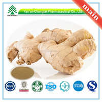 Manufacture Sales Directly 100% Superior quality GMP/BV Certificate Ginger Root Extract Powder