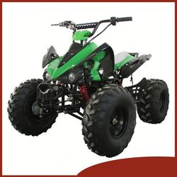 Motorcycle tricycle cargo