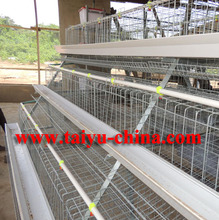 Layer Egg Chicken Cage / Poultry Farm House Design ( Enclosed Many Cage Photos On the Farms))