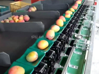 manufacturer of mango fruit grading Machine