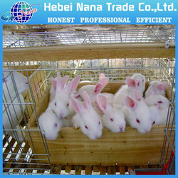 2015 factory new wholsale hiogh quality low price welded Wire Rabbit Cage