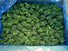 New crop IQF frozen spinach with good price