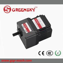 Alta eficiencia de la buena calidad 40 W 80 mm 120 / 230 V sin escobillas dc diesel motor fuera de borda