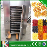 2015 china best selling fruit and vegetable drying oven/fruit and vegetable drying machine