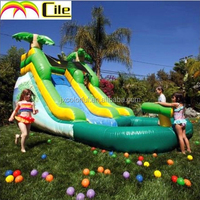 CILE Attractive New Style Inflatable Slides