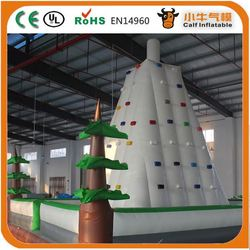 Outdoor inflatable climbing walls ,giant inflatable rock climbing wall,inflatable sport wall for kids sale