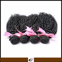 unprocessed Brazilian kinky curly hair brazilian virgin curly hair extension kinky afro wigs human hair