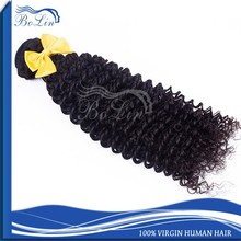 Wholesale virgin brazilian human hair afro kinky curly hair brazilian