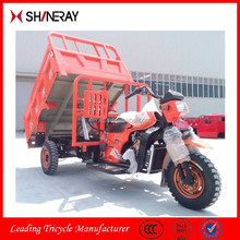 Wholesale New Products Three-Wheel Motorcycle/Motocycle Three Wheel/Iron Tricycle