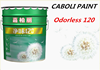 Caboli water based gloss paint acrylic wall paint colors