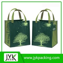 High Quality PP Non Woven Shopping Carry Bag in China