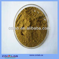 ISO&GMP Manufactory Supply High Standard Touchi Extract